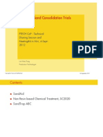 4. Chemical Sand Consolidation Trials (Shell)