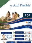 Presentación1 Flexible Ambar