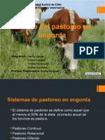 Manejo Pastoreo