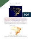 Distribuição Da População Brasileira