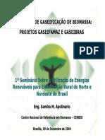 1°SeminárioFRE_ANEEL_CENBIO_Gaseificação_041209
