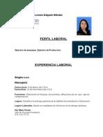 Hoja de Vida Sandra Lorena Salgado (3) (1)