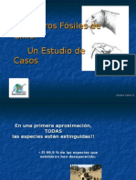 Clase 03 - Mamíferos Fósiles Chilenos [Johann Canto]