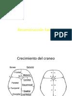 Reconstruccion Facial y Malf. Congenitas.pdf