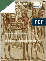 Reflexao critica Patrimonio Cultural