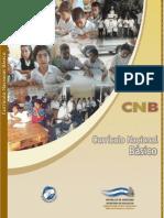 Ensayo salud for Curriculo basico nacional