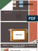 proiect romana (1) (1)
