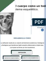 desarrolloseo-101130103952-phpapp02