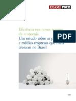 Relatorio PME 2009
