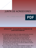 JUNTA DE ACREEDORES.pptx
