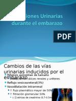 Infecciones Urinarias Durante El Embarazo