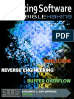 EXploiting Software and SHELLCODE