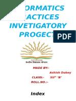 Ip Investigatory Project