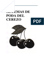 Sistemas de Poda Del Cerezo