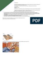 Analyse Géomorphologique Des Crues