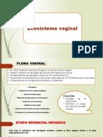 Ecosistema Vaginal