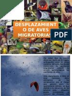 AVES MIGRATORIAS.pptx