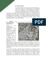 Informe Descriptivo. Pinto Salinas.