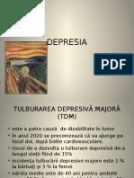 curs_2_-_depresia socola iasi