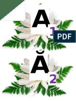 Alfabet cifrat