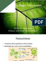 Aula 11 – Fisiologia – Fotossíntese (1)