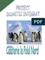 Calatorie La Polul Nord Proiect Didactic Integrat