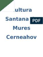 Cultura Sanatana de Mures Cerneahov