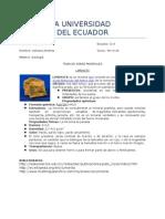 monografia minerales