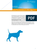 Treatment Recommendations for CKD in Dogs