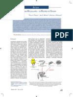 função_chaperonas.pdf