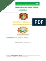 trabajo (informe para unalm) (1).pdf