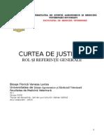Curtea de Justitie Europeana