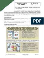 Boletin Integral  N° 001 Ruido.doc