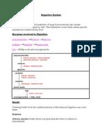 Biology-Digestive System Enzyms