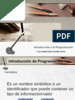 Diseño Web_Programación.pptx