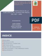 Diapositivas Para Paper de Hidrologia