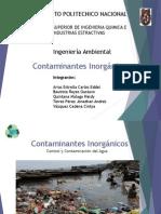 Contaminantes Inorganicos (2)