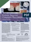 1108cei Dentsply Restorations