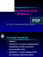Proses Persalinan Normal