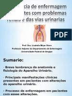 Processo de enfermagem em pacientes com alterações do sistema urinário 2014-2 (1).ppt
