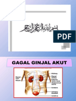 GAGAL+GINJAL+AKUT