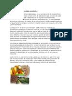 4.1 Economia y Diversidad Economica