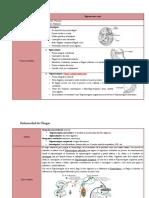 8) CHAGAS.pdf