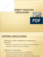 Anatomia y Fisiologia Circulatoria Ppt