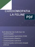 Cardiomiopatia La Feline
