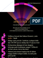 MOLUSCA