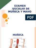 Evaluacion Muscular de muñeca y mano