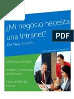 Mi Negocio Necesita Una Intranet Por Neiy Briceño