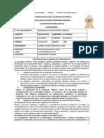 1_Plan Docente 2014-II