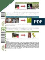 controlenatural-110621225739-phpapp01.pdf